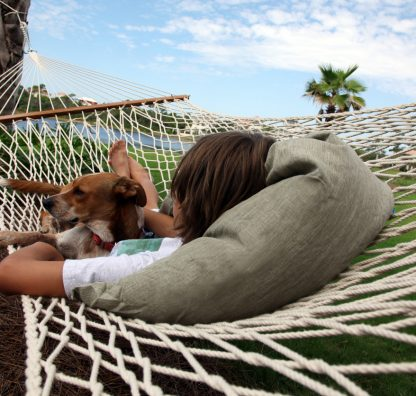 Best Dog-Friendly Holiday Resorts for Vacation Ownership and Timeshare